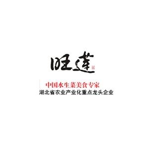 武汉世林福幸科技发展有限公司