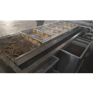 黄芩清洗机